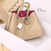 сумка мода стиль диор