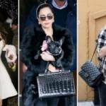 Модные сумки знаменитостей 2015 – 2016 на фото